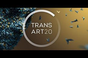 we suggest... transart 2020 INAUDITO